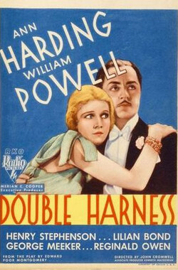 双线束 Double Harness (1933)