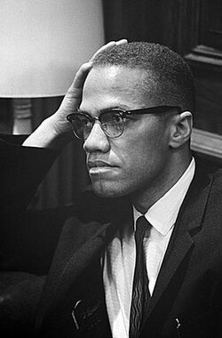 Malcolm X: A Search for Identity (1987)
