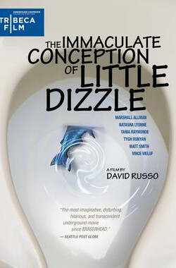 小迪兹的完美观念 The Immaculate Conception of Little Dizzle (2009)