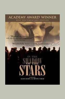 在星光掩映下 In the Shadow of the Stars (1991)