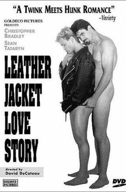 恋恋皮夹克 Leather Jacket Love Story (1998)