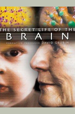 The Secret Life of the Brain (2002)