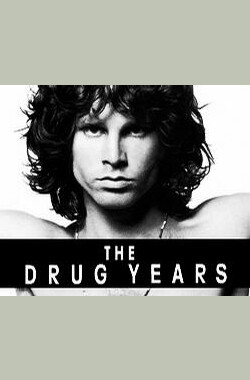 The Drug Years (2006)