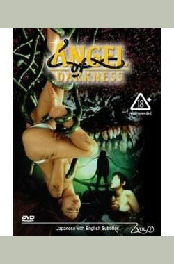 Angel of Darkness 2 (1995)