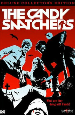 诱拐者 The Candy Snatchers (1973)