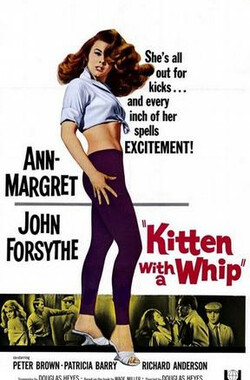 性感小野猫 Kitten with a Whip (1964)