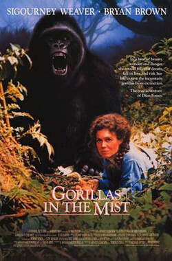 迷雾森林十八年 Gorillas in the Mist: The Story of Dian Fossey (1988)