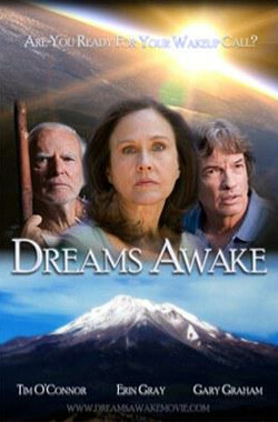 Dreams Awake (2010)