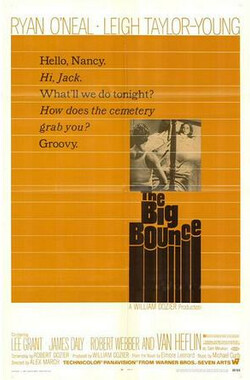 欲海荡娃 The Big Bounce (1969)