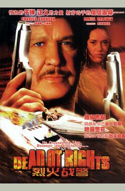烈火战警 Donato and Daughter (1993)