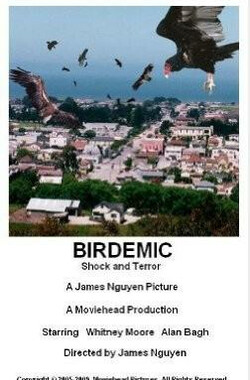 群鸟:震惊和恐怖 Birdemic: Shock and Terror (2010)