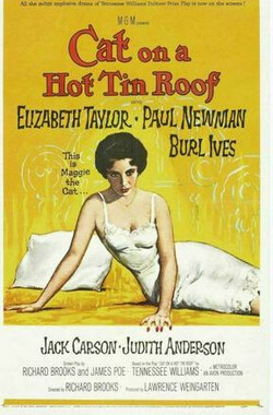 朱门巧妇 Cat on a Hot Tin Roof (1958)