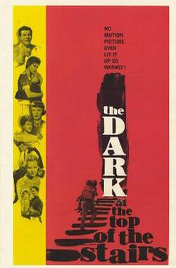 楼顶的黑暗 The Dark at the Top of the Stairs (1960)