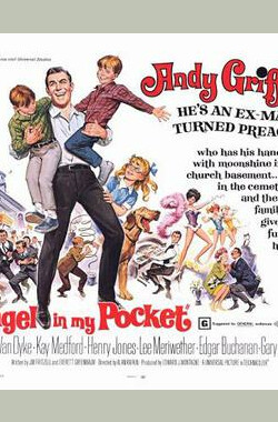 锦囊天使 Angel in My Pocket (1969)