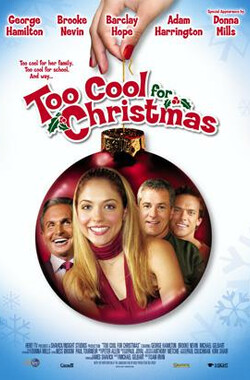 圣诞爱情 Too Cool for Christmas (2004)