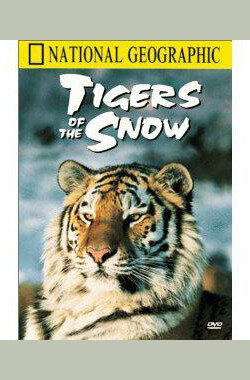 Tigers of the Snow (1997)