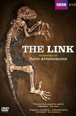 The Link (2009)
