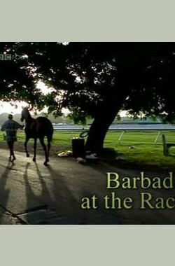 奔跑着的巴巴多斯 Barbados at the Races (2010)