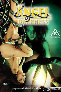 黑暗天使 Angel of Darkness (1995)