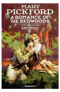 A Romance of the Redwoods (1917)