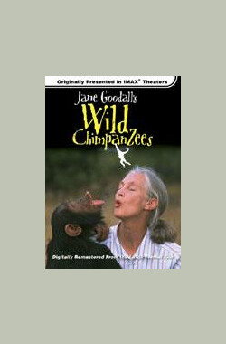珍古德的野生黑猩猩 Jane Goodall's Wild Chimpanzees (2002)