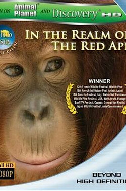 狂野亚洲:赤猿的领地 Wild Asia 1 In the Realm of the Red Ape (2009)