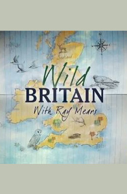狂野英伦 第二季 ITV One - Wild Britain with Ray Mears Series 2 Season 2 (2011)