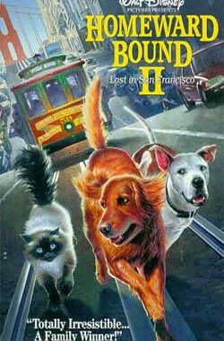 看狗在说话之旧金山历险记 Homeward Bound II: Lost in San Francisco (1996)