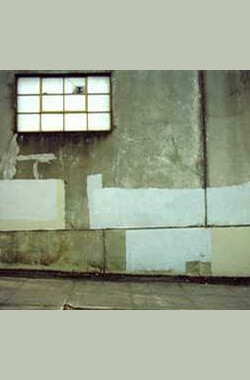 The Subconscious Art of Graffiti Removal (2002)