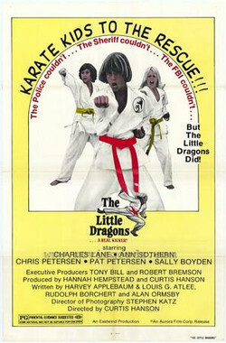 空手道少年 The Little Dragons (1979)