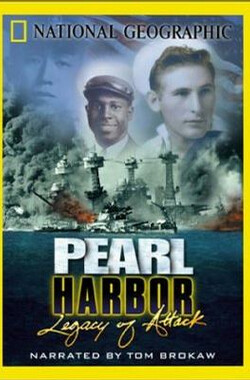珍珠港 Pearl Harbor - Legacy of Attack (2001)