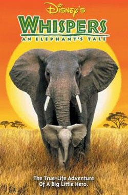 【小象的故事】 Whispers: An Elephant's Tale (2000)