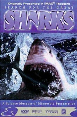 寻鲨记 Search for the Great Sharks (1995)