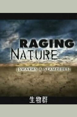 大自然之怒:生物为害 Raging Nature:Swarms&Stampedes (2008)