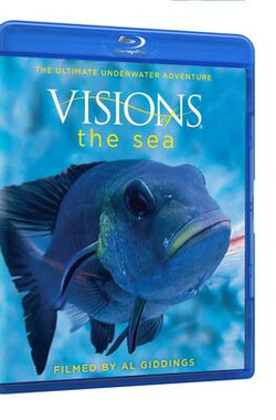 海洋视觉 Visions of the Sea