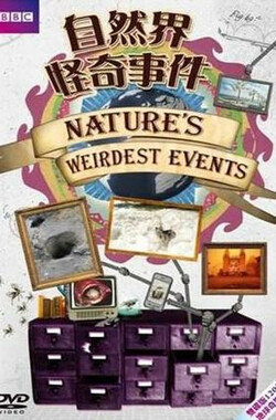 大自然怪现象 第一季 Nature's Weirdest Events Season 1 (2012)