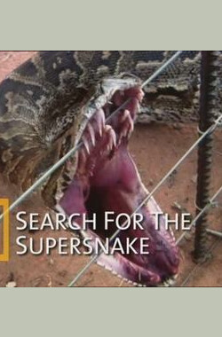 国家地理杂志:超级大蛇 National Geographic: Search For The Supersnake (2005)