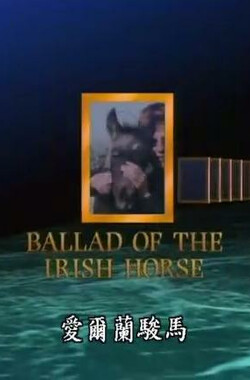 爱尔兰骏马 Ballad of the Irish Horse (1985)