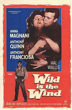 暴风雨 Wild Is the Wind (1957)