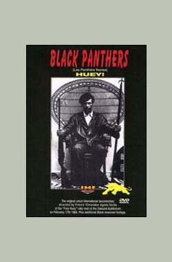 黑豹党 Black Panthers (2001)
