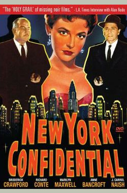 纽约机密 New York Confidential (1955)