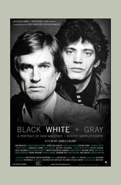 Black White + Gray (2007)