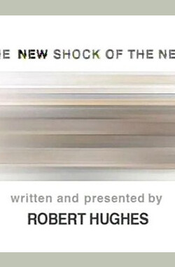 新新艺术的震撼 The New Shock Of The New (2004)