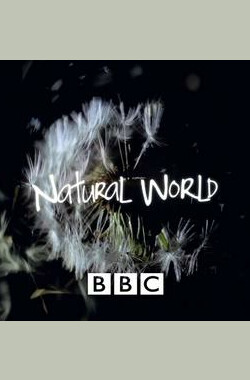 BBC - 大自然 The Natural World (1983)
