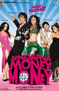 钻石真情 Apna Sapna Money Money (2006)