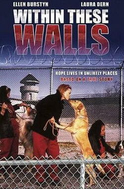 高墙内 Within These Walls (2001)