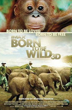 天生狂野 Born to Be Wild (2011)