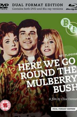 爱情游戏谁来玩 Here We Go Round the Mulberry Bush (1968)