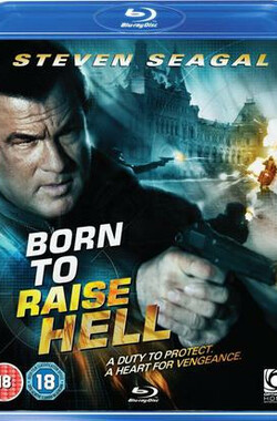 天罡星下凡 Born to Raise Hell (2010)