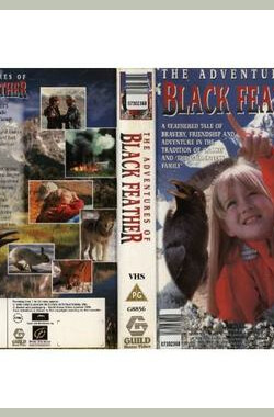 黑羽毛 The Adventures of Black Feather (1995)